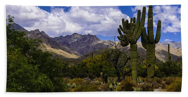Sabino Canyon No4 Beach Towel