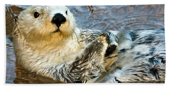Sea Otter Portrait Beach Towel