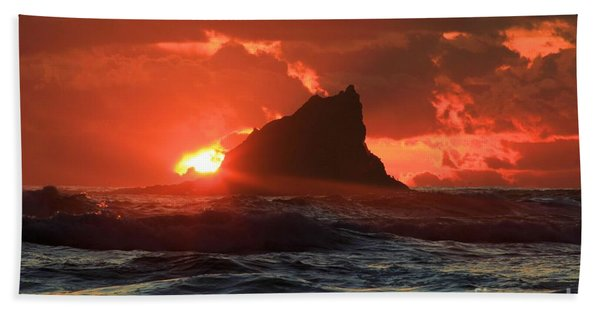 Second Beach Shark Beach Towel