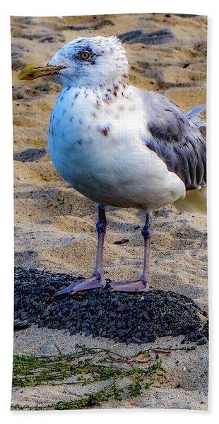 See The Gull Beach Towel