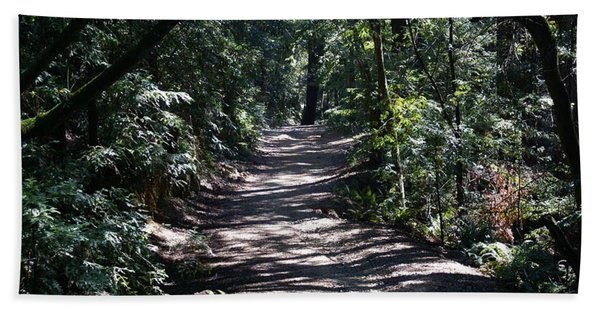 Shady Road On Mt Tamalpais Beach Towel