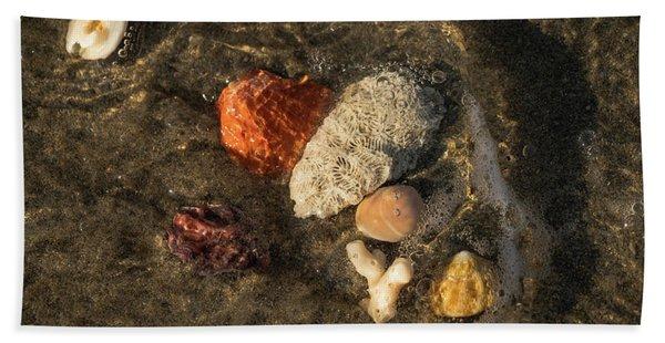 Shell Wave 4 Delray Beach Florida Beach Towel