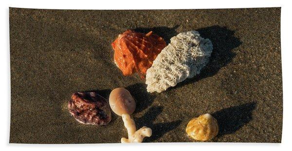 Shell Wave 5 Delray Beach Florida Beach Towel