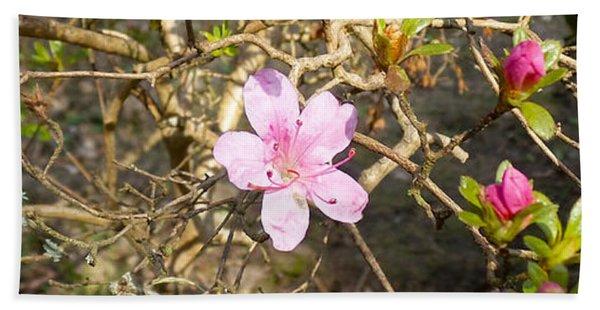 Single Pink Bloom Bush Beach Towel