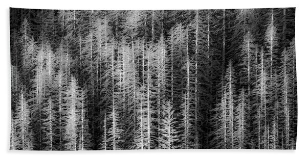 Sitka Abstraction Beach Towel