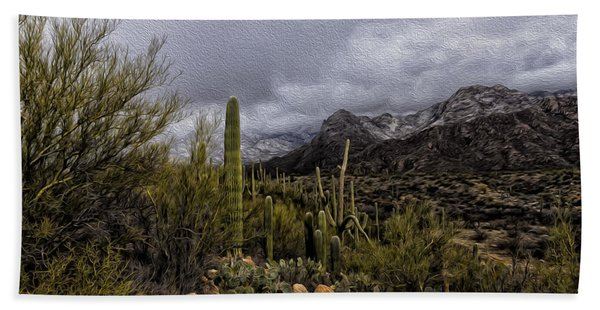 Sonoran Winter No.3 Beach Towel