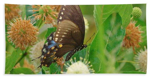 Spicebush Swallowtail Beach Towel