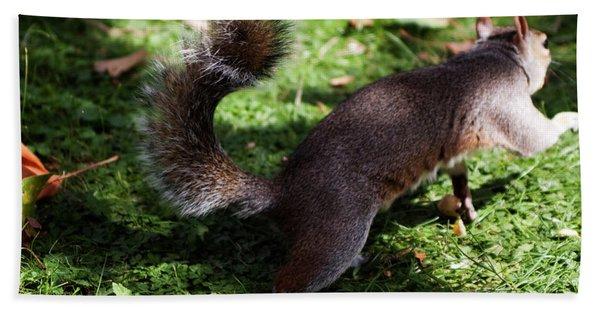 Squirrel Running Beach Towel