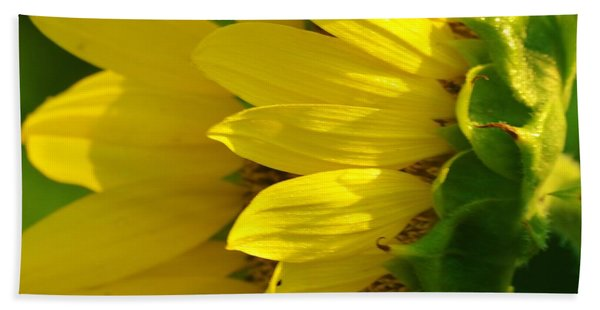 Sunflower Side Beach Towel