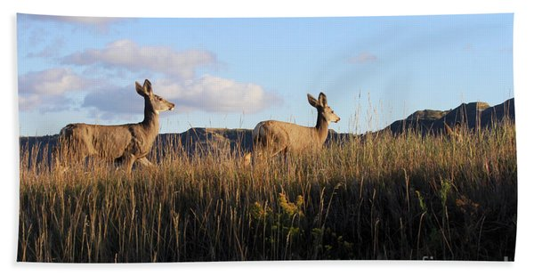 Sunlit Deer  Beach Towel