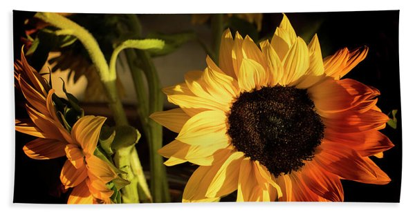 Beach Towel featuring the photograph Sunny An Dark by Michael Hope