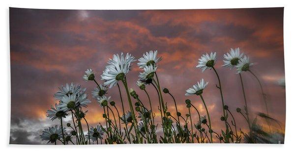 Sunset And Daisies Beach Towel