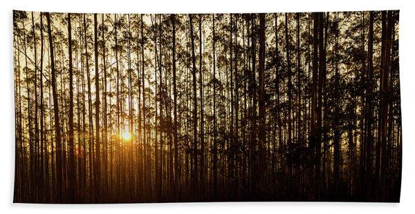 Sunset Behind Row Of Trees In Sihlouette Beach Towel