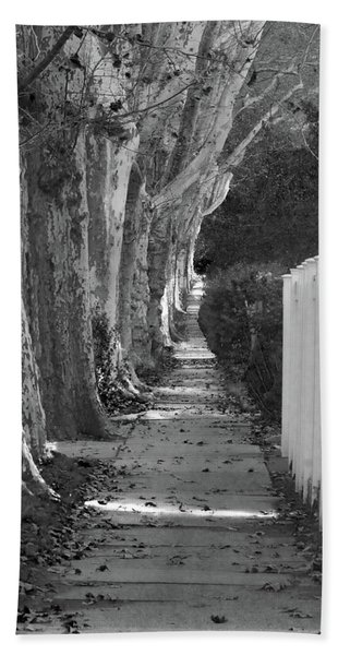 Sycamore Walk-grayscale Version Beach Towel