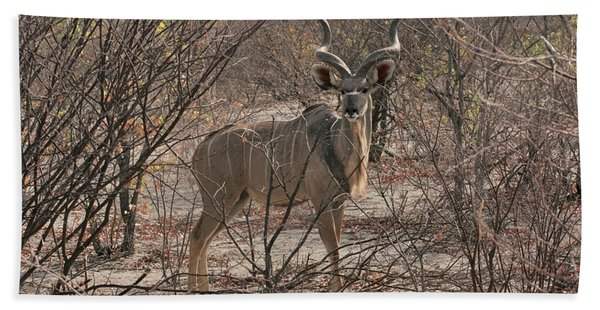 The Kudu Beach Towel