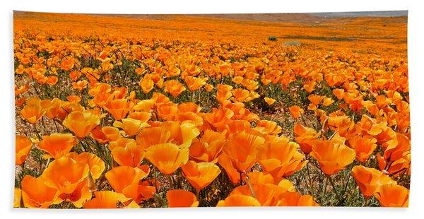 The Poppy Fields - Antelope Valley Beach Towel