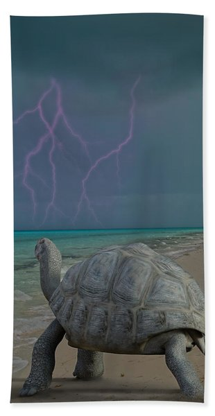 The Wonders Of Mother Nature Beach Towel
