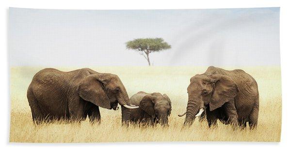Three Elephant In Tall Grass In Africa Beach Towel