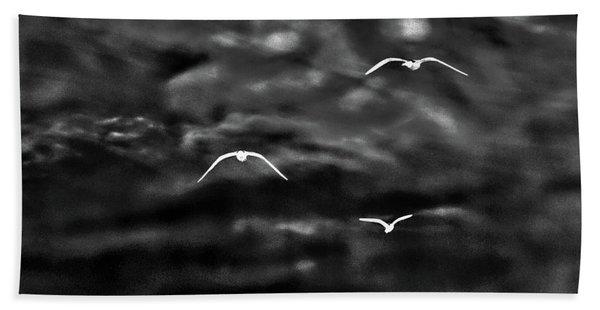 Three Seagulls Beach Sheet