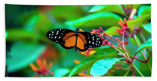 Tiger Longwing Butterfly Beach Towel