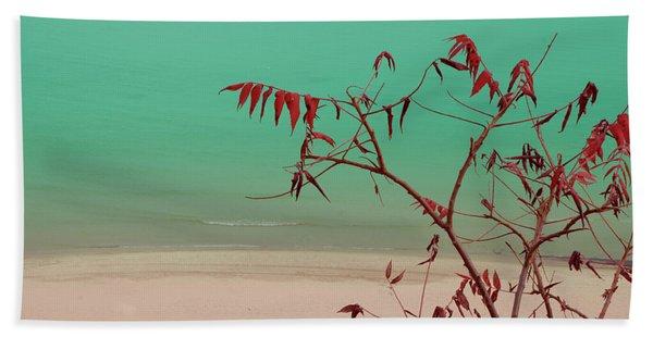 Tranquil View Beach Sheet