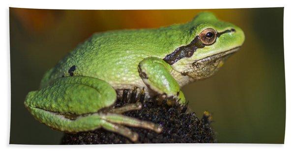 Treefrog On Rudbeckia Beach Towel