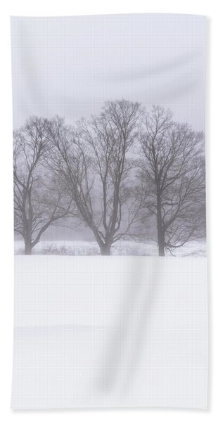 Beach Towel featuring the photograph Trees In Fog by Tom Singleton