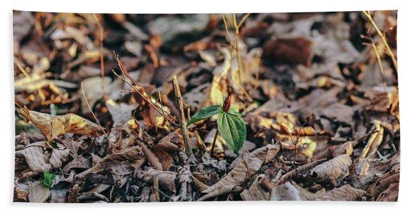 Trillium Blooming In Leaves On Forrest Floor Beach Sheet