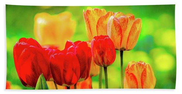 Tulips5 Beach Towel