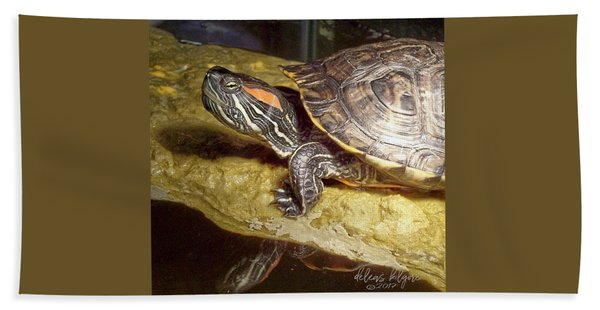 Turtle Reflections Beach Towel