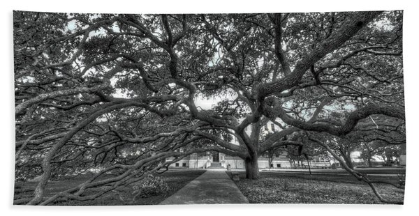 Under The Century Tree - Black And White Beach Towel