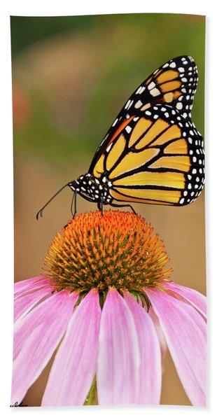 Monarch Butterfly On A Purple Coneflower Beach Towel