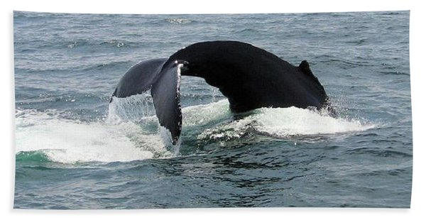 Whale Of A Tail Beach Towel