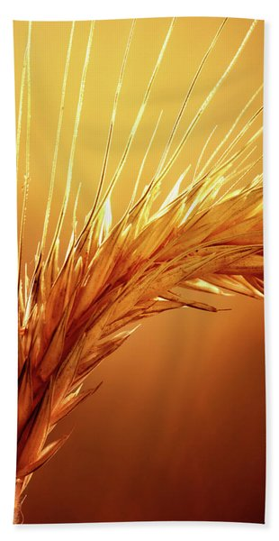 Wheat Close-up Beach Towel