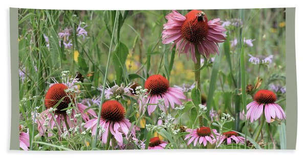Wild Coneflowers Beach Towel