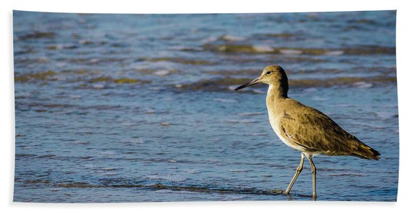 Willet 2 Beach Towel