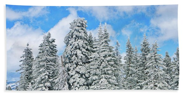 Winterscape Beach Towel