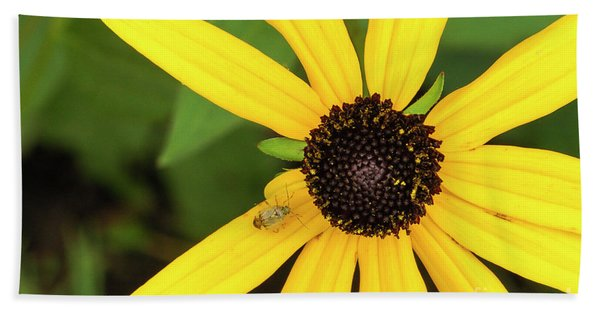 Yellow Petaled Flower With Bug Beach Towel