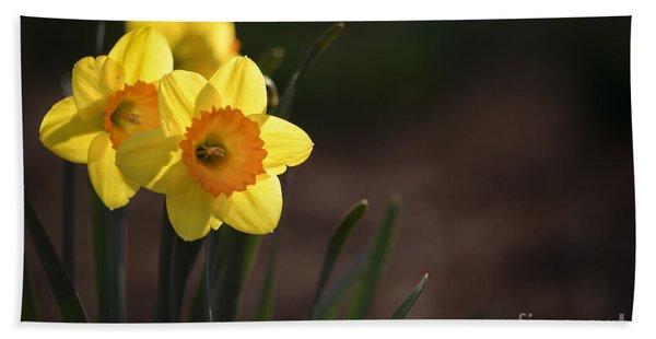 Yellow Spring Daffodils Beach Towel