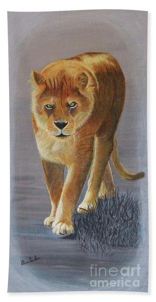 Young Male Lion Beach Sheet