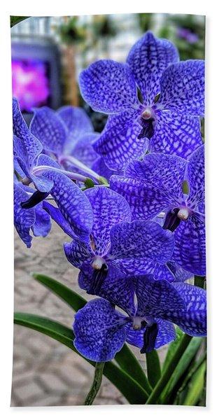 Deep Purple Orchid Beach Towel