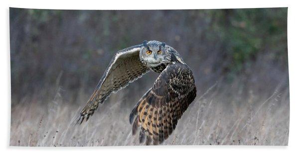 Eurasian Eagle Owl Flying Beach Towel