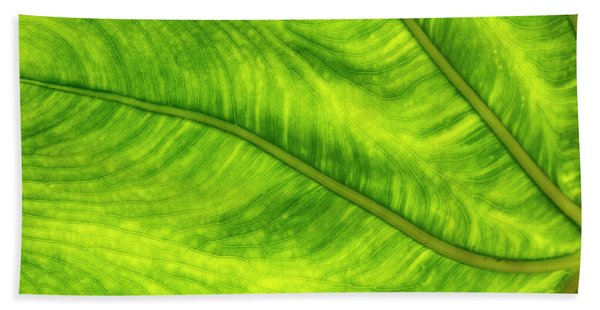 Leaf Design Beach Towel