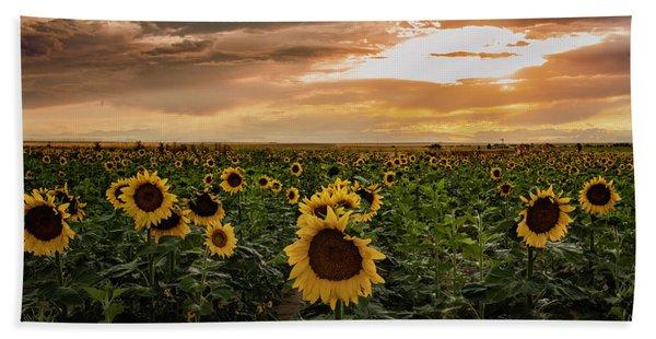 A Field Of Sunflowers At Sunset Beach Sheet