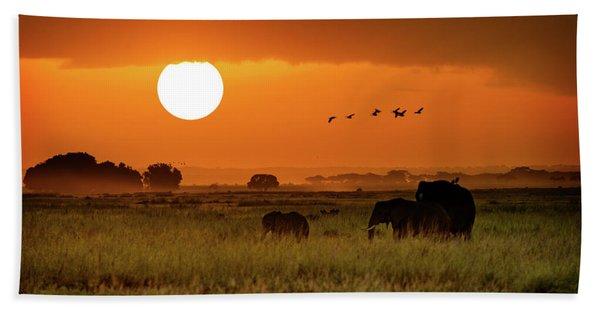 African Elephants Walking At Golden Sunrise Beach Towel