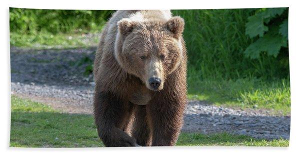 Alaskan Brown Bear Walking Towards You Beach Towel