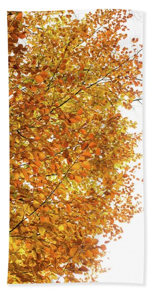 Autumn Explosion 2 Beach Towel