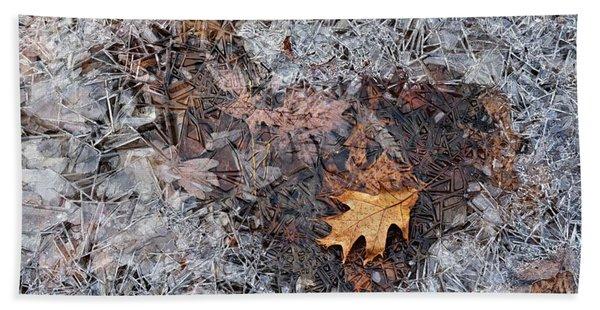 Autumn Freezing Over Beach Sheet