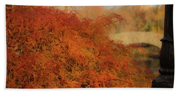 Autumn Maple Beach Towel