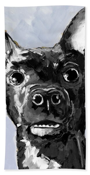 Black Chihuahua Dog Portrait  Beach Sheet
